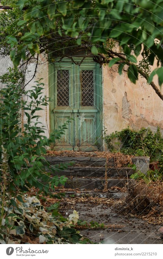 green door overgrown plants House (Residential Structure) Garden Plant Tree Leaf Ruin Architecture Door Wood Old Retro Green Moody Tradition Lush abandoned