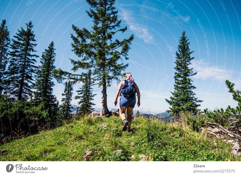 Woman hiking in Bavaria Hiking Feminine Young woman Youth (Young adults) 18 - 30 years Adults Nature Landscape Sky Summer Tree Meadow Backpack Relaxation Going