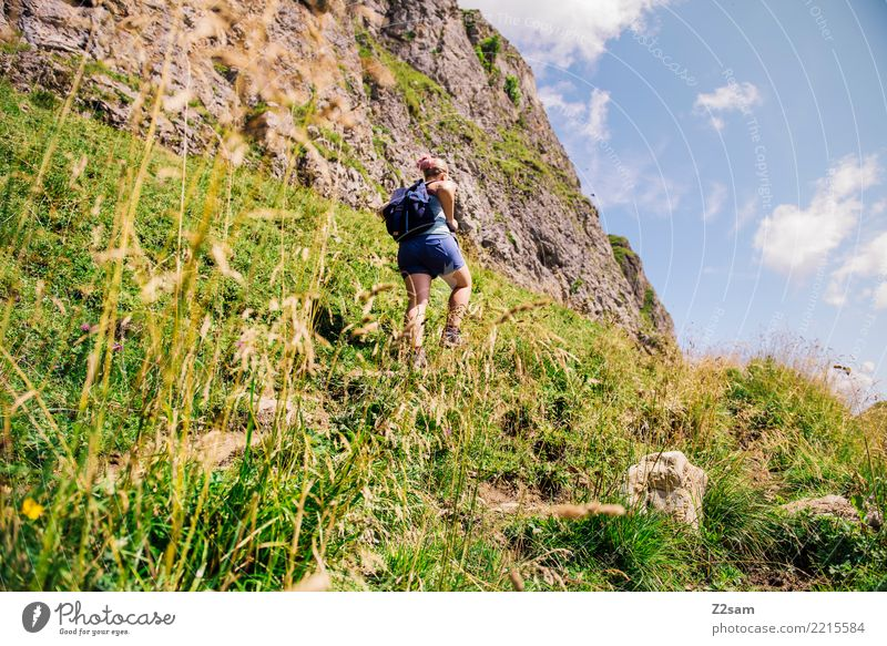 Ascent in Upper Bavarian Alps Mountain Hiking Young woman Youth (Young adults) 30 - 45 years Adults Nature Landscape Summer Beautiful weather Bushes Backpack