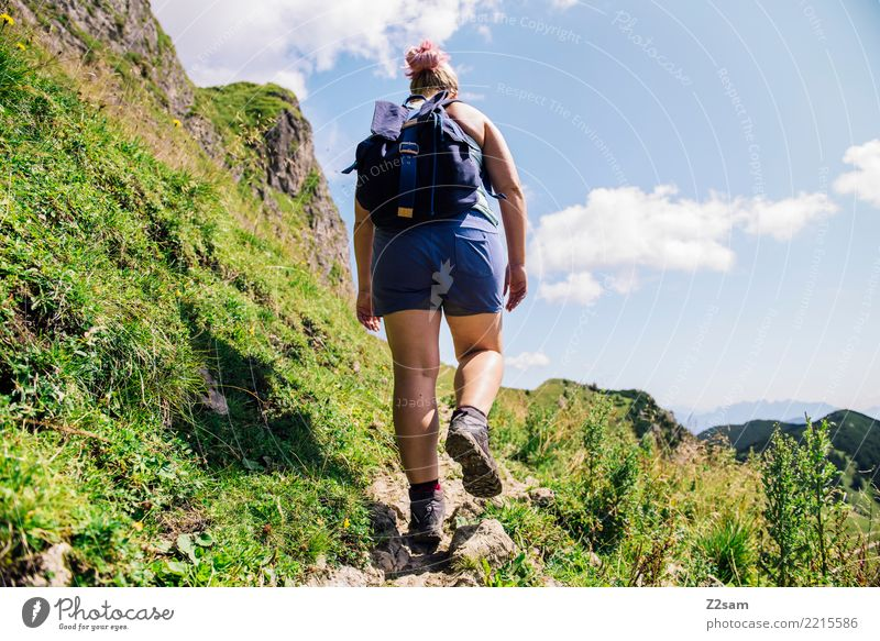 Ascent to the Upper Bavarian Rotwand (Alps) Mountain Hiking Young woman Youth (Young adults) 30 - 45 years Adults Nature Landscape Summer Grass Meadow Backpack