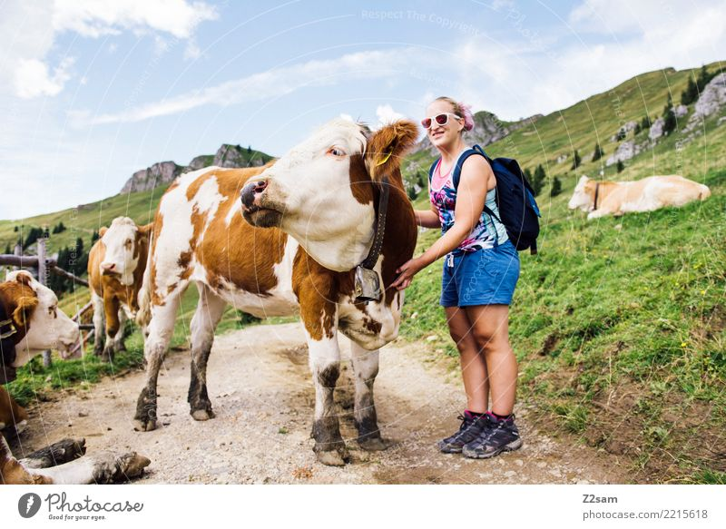 and one last time Hiking Young woman Youth (Young adults) 18 - 30 years Adults Nature Landscape Beautiful weather Alps Mountain Backpack Blonde Cow Relaxation
