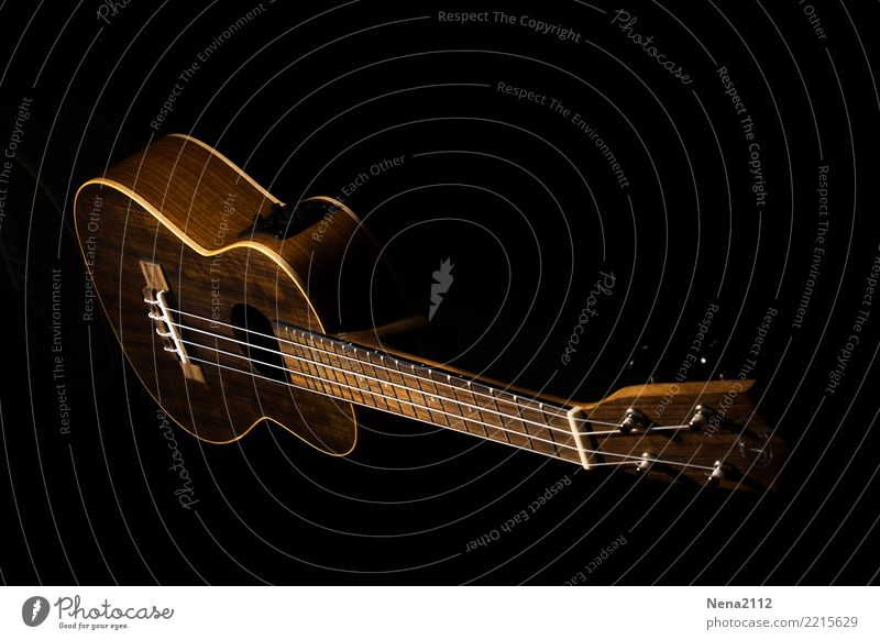 Ukulele 01 Art Music Listen to music Concert Outdoor festival Stage Opera Band Musician Orchestra Emotions Moody Joy Anticipation Enthusiasm Warm-heartedness