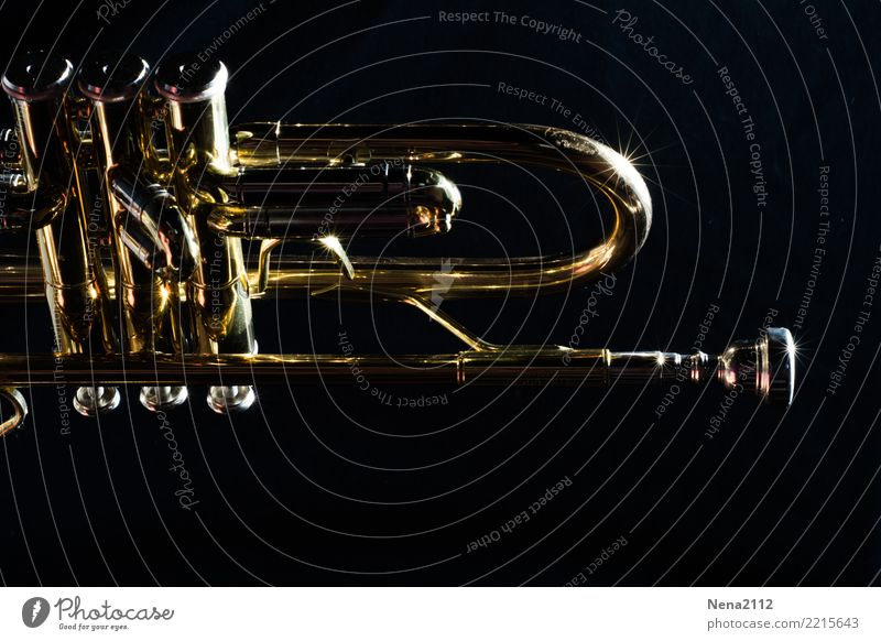Trumpet 04 Art Music Listen to music Concert Outdoor festival Stage Opera Band Musician Orchestra Emotions Moody Joy Joie de vivre (Vitality) Success Power
