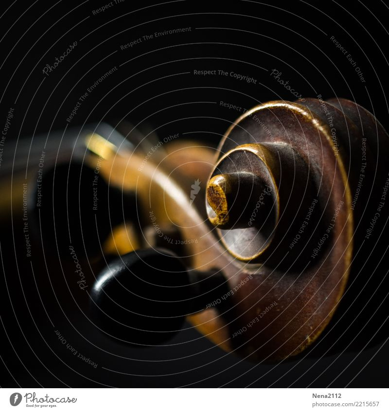 Violin - Q2 Art Music Listen to music Concert Outdoor festival Stage Opera Musician Orchestra Esthetic Round Wood String instrument Play violin Snail Swirl