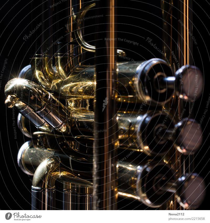 Trumpet - Q4 Art Artist Music Listen to music Concert Outdoor festival Stage Opera Band Musician Orchestra Wind instrument Brass instrument Keyboard Metal
