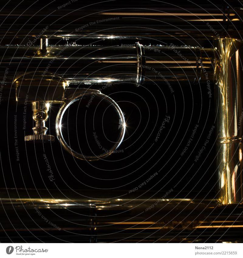 Trumpet - Q2 Art Music Listen to music Concert Outdoor festival Stage Opera Band Musician Orchestra Glittering Brass instrument Wind instrument Round Metal