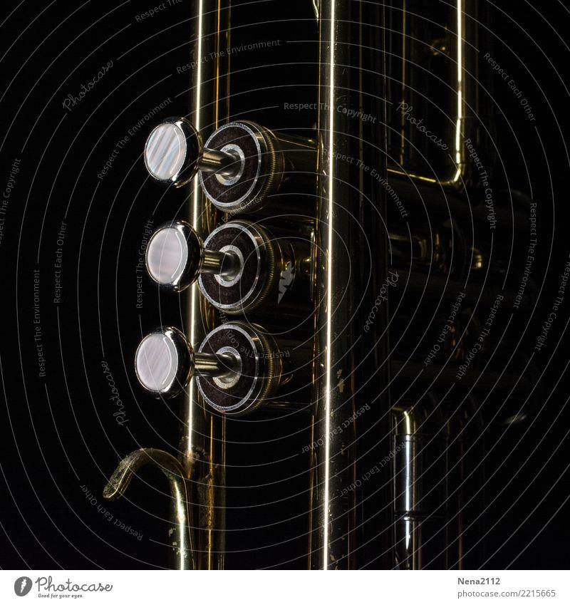 Trumpet - Q1 Music Listen to music Concert Outdoor festival Stage Musician Orchestra Dark Elegant Round Black Wind instrument Keyboard instrument