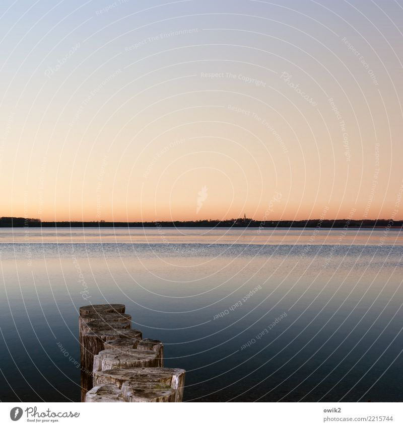 resting pool Environment Nature Landscape Water Cloudless sky Horizon Beautiful weather Lake Break water Wooden stake Loneliness Idyll Far-off places Calm