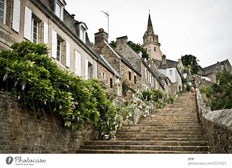 Old Flower City Plant House (Residential Structure) Wall (building) Window Wall (barrier) Tall Facade Stairs Church Bushes Travel photography Chimney