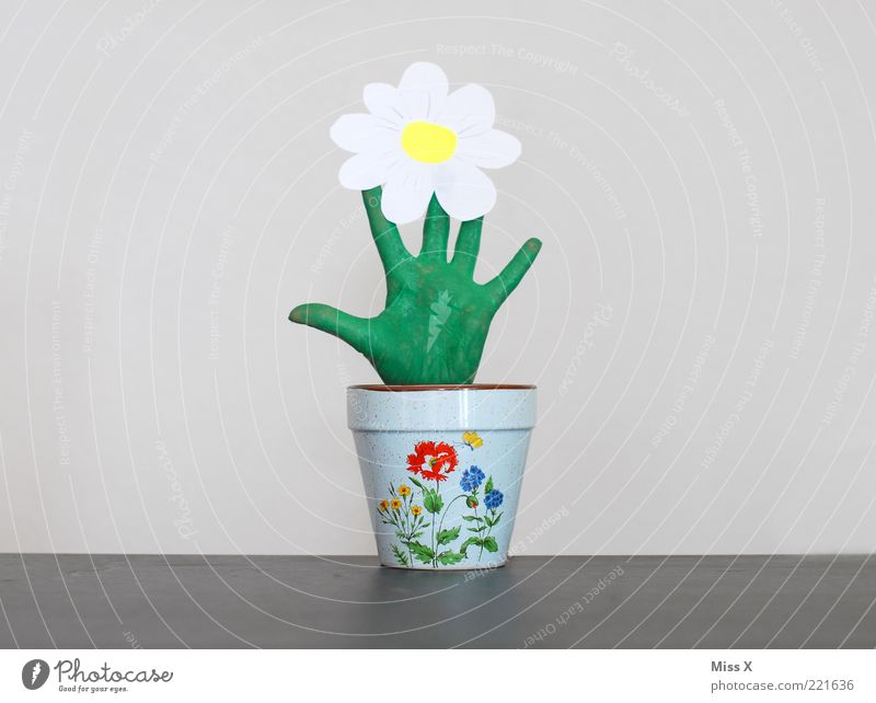Green Plant Flower Leaf Funny Blossom Exceptional Growth Decoration Fingers Creativity Blossoming Whimsical Positive Flowerpot Gloves