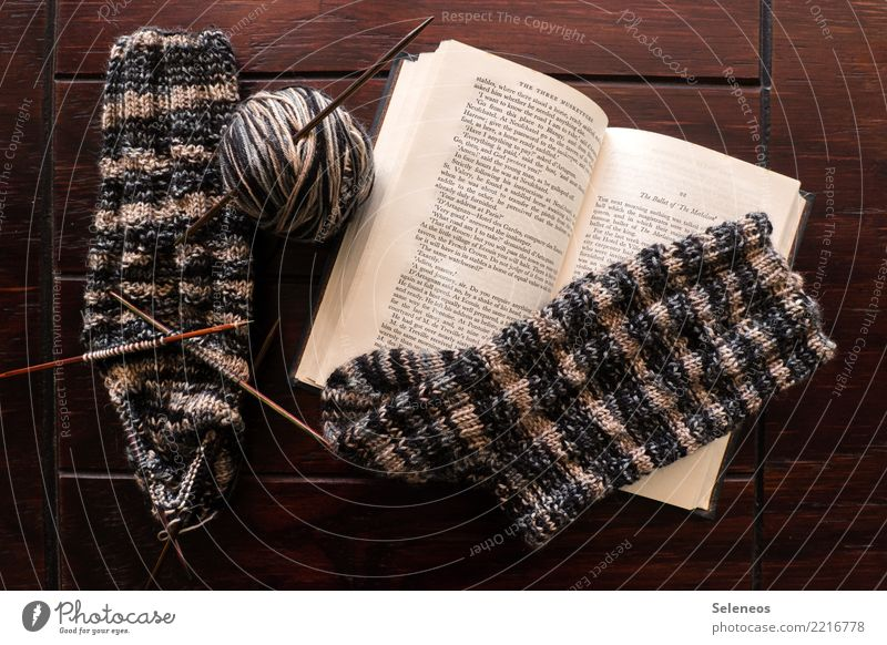 winter employment Relaxation Calm Leisure and hobbies Reading Handcrafts Knit Stockings Book Wool Ball of wool Wooly Wool socks Knitting needle Knitting pattern
