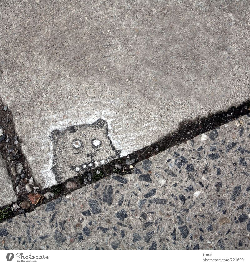 Black Animal Eyes Gray Stone Line Art Funny Concrete Exceptional Floor covering Cute Ear Set of teeth Creativity Sidewalk