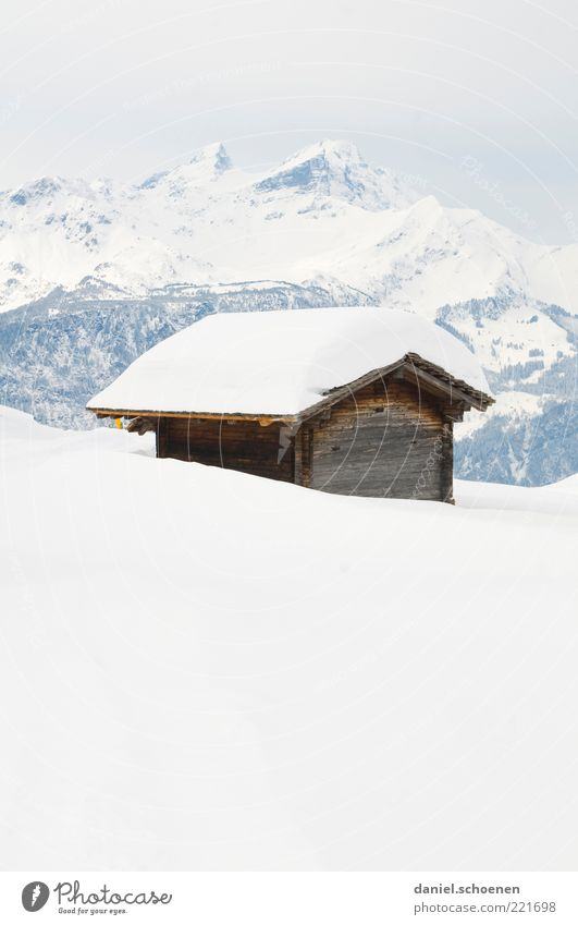 Hasliberg Winter Snow Alps Mountain Snowcapped peak Hut Bright Blue White Switzerland Subdued colour Copy Space top Copy Space bottom High-key Panorama (View)