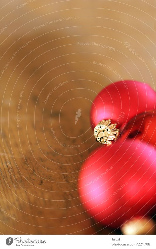 Christmas & Advent Red Wood Moody Brown Feasts & Celebrations Gold Glittering Lie Living or residing Decoration Illuminate Sphere Glitter Ball Wooden floor