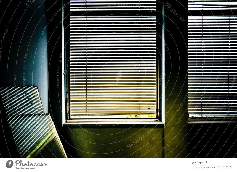 Window color Building Wall (barrier) Wall (building) Venetian blinds Roller shutter Dark Trashy Gloomy Blue Yellow Decline Past Transience Change Destruction