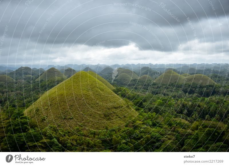 Chocolate Hills Clouds Summer Bad weather Forest Mountain Philippines Exceptional Gray Green Uniqueness Vacation & Travel Smooth Geology Conical Grassland