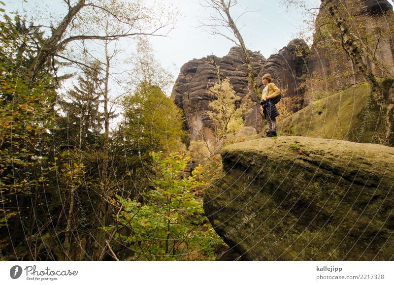 Child Human being Nature Landscape Tree Forest Mountain Environment Autumn Boy (child) Tourism Germany Rock Trip Hiking Body