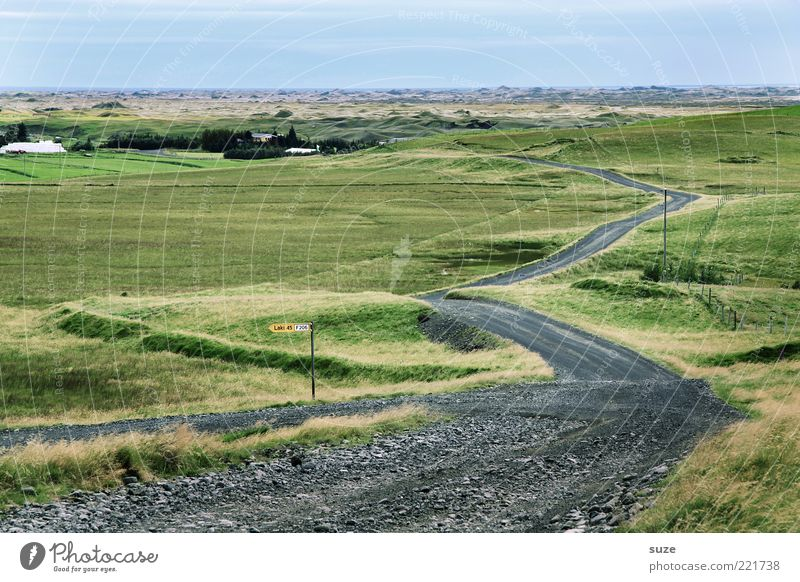 Nature Ocean Green Far-off places Street Meadow Lanes & trails Landscape Coast Signs and labeling Driving Target Curve Iceland Grassland Environment