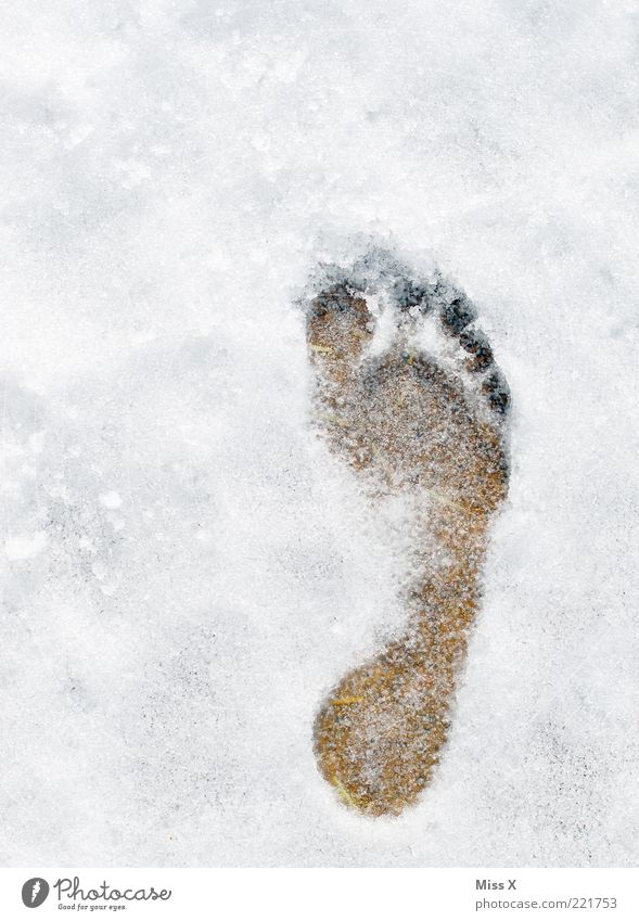 the voetafdruk Winter Ice Frost Snow Cold White Freeze Barefoot Footprint Imprint Colour photo Exterior shot Deserted Bird's-eye view Snow track Copy Space top