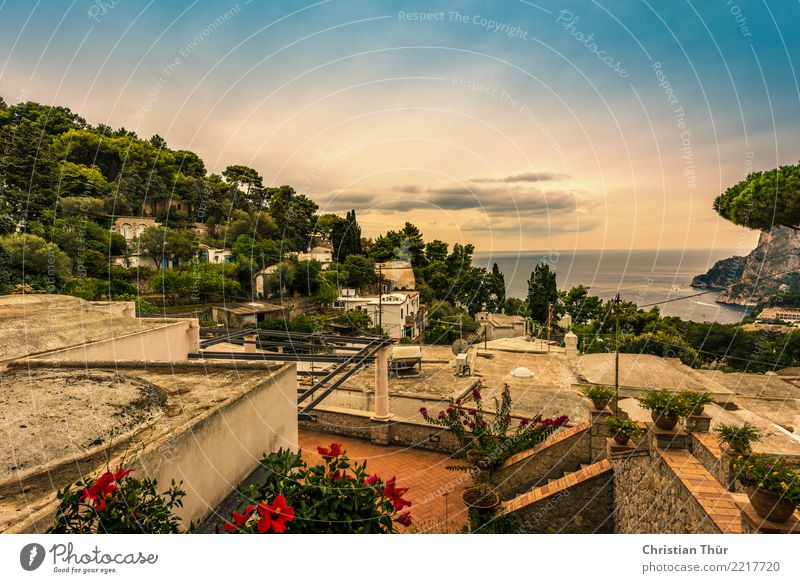 Sicily taormina Environment Nature Landscape Clouds Sunlight Summer Autumn Beautiful weather Tree Flower Bushes Garden Hill Ocean Island Taormina Italy Village