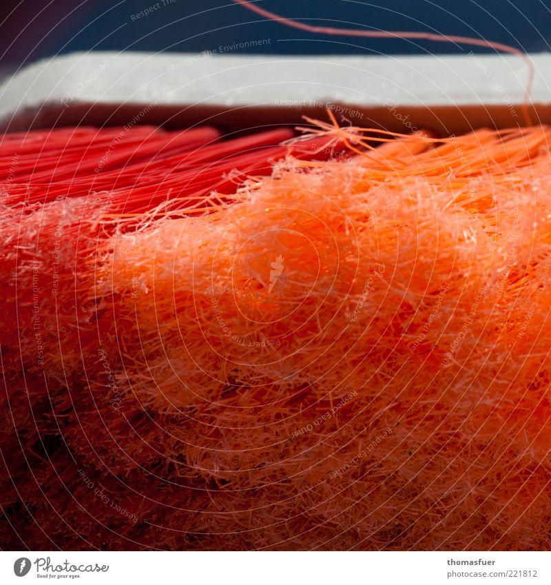 Red Orange Arrangement Clean Cleaning Services Plastic Optimism Broom Cleaner Utilize Bristles Sweep Housekeeping