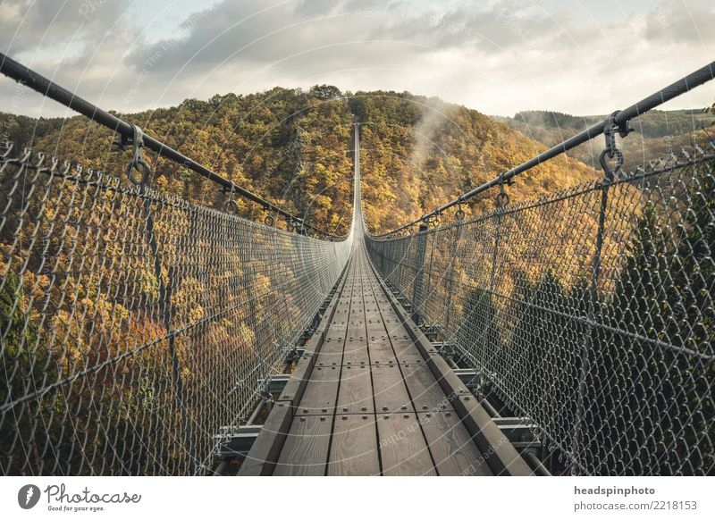 Geierlay suspension bridge in autumn Vacation & Travel Tourism Trip Adventure Freedom Expedition Hiking Nature Landscape Autumn Fog Forest Hill Mountain Canyon