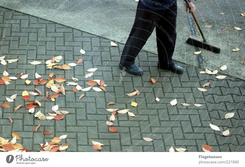 Old Leaf Autumn Senior citizen Legs Dirty Concrete Clean Cleaning Asphalt Pants Pavement Boredom Autumn leaves Tar November