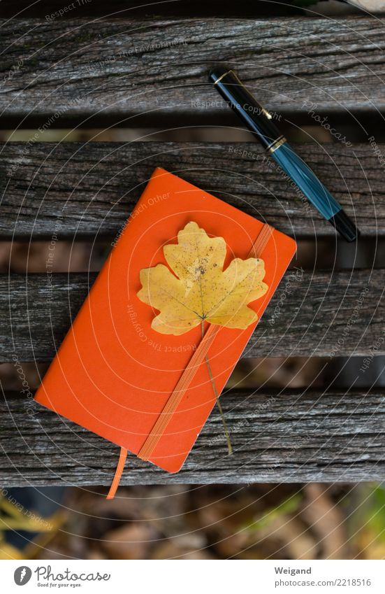 remembrance Stationery Paper Piece of paper Pen Write Free Yellow Orange Attentive Judicious Wisdom Smart Sadness Concern Grief Death Autumn Notebook Leaf