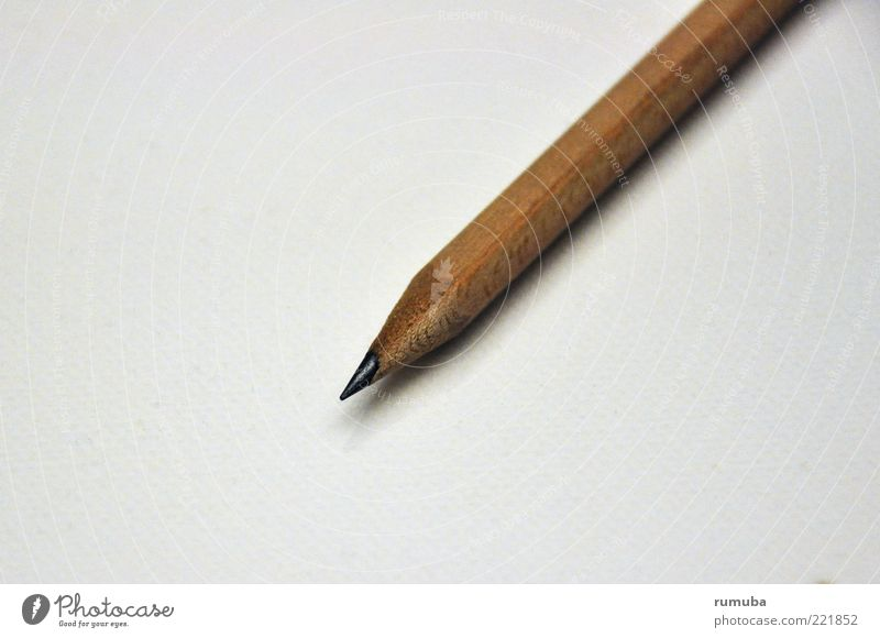 pencil Stationery Wood Brown Pencil Point Sharpened Colour photo Interior shot Copy Space left Neutral Background Shadow Bird's-eye view Copy Space bottom