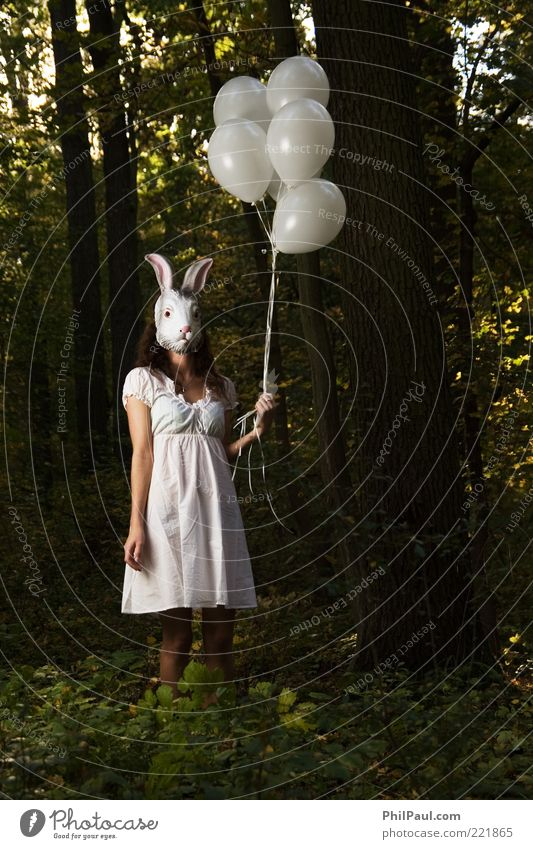 follow the white rabbit Exotic Face Carnival Hallowe'en Human being Feminine Young woman Youth (Young adults) Woman Adults 1 Nature Tree Forest Dress Mask