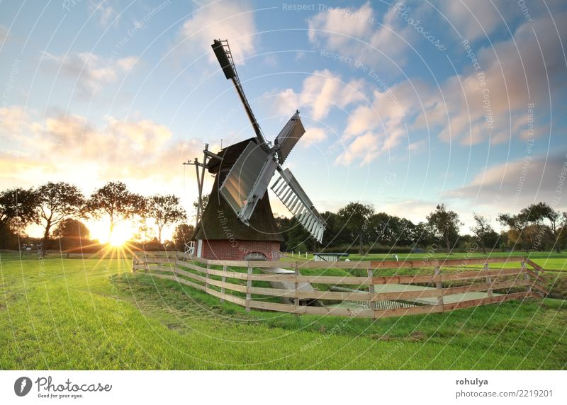 sunrise behind charming Dutch windmill on meadow Sun Nature Landscape Sky Clouds Sunrise Sunset Summer Beautiful weather Grass Meadow Field Building