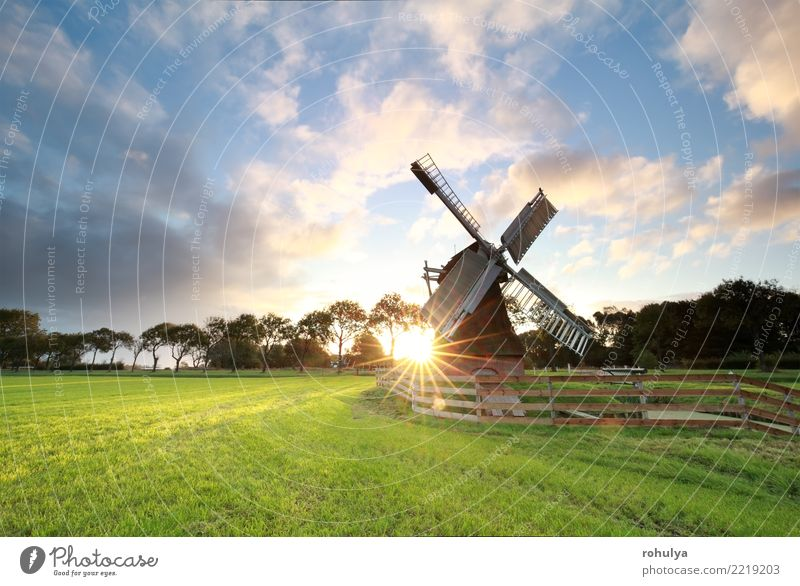 sunrise behind beautiful Dutch windmill in Holland Vacation & Travel Sun Nature Landscape Sunrise Sunset Sunlight Summer Beautiful weather Grass Meadow Building