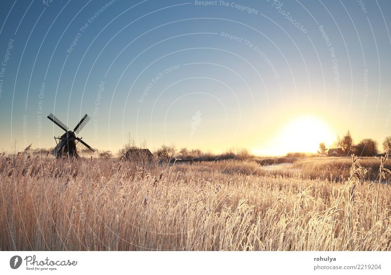 sunrise by windmill on frosty winter morning Vacation & Travel Sun Winter Snow Nature Landscape Sky Sunrise Sunset Fog Ice Frost Meadow Building Cold Blue