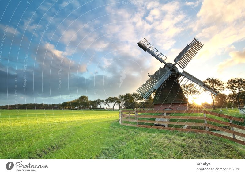 charming Dutch windmill ats sunrise Sun Nature Landscape Sky Clouds Sunrise Sunset Sunlight Summer Beautiful weather Grass Meadow Building Architecture Bright