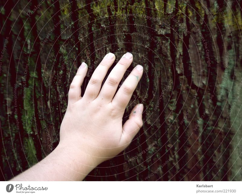 Human being Child Nature Old Hand Tree Summer Calm Relaxation Environment Life Emotions Infancy Fingers Lifestyle Touch