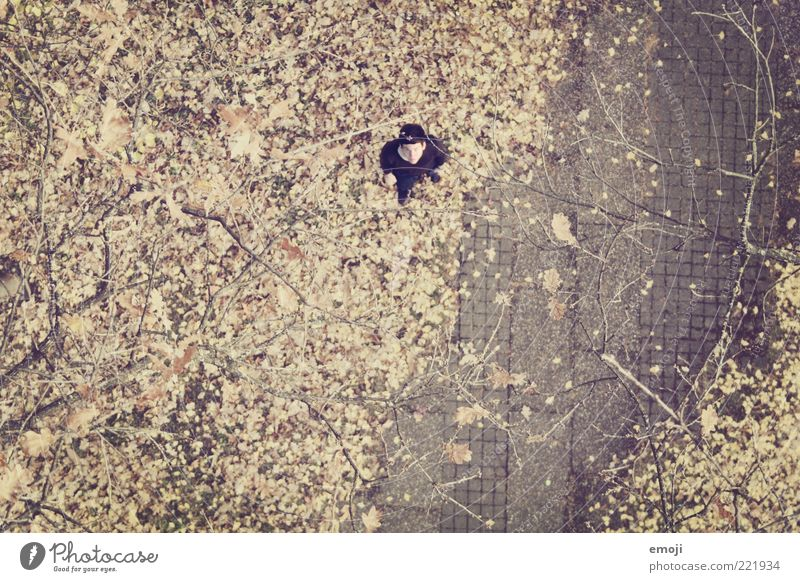Human being Loneliness Adults Autumn Park Masculine Exceptional Stand Ground 18 - 30 years Under Bird's-eye view Individual Autumn leaves Doomed Autumnal