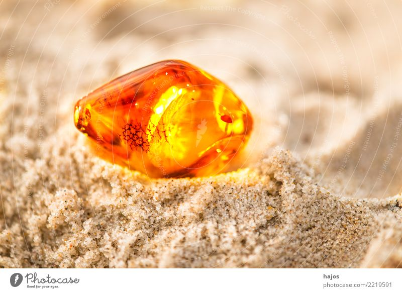 Amber at the Baltic Sea beach Alternative medicine Medication Beach Elements Sun Jewellery Stone Illuminate Yellow Eternity Sandy beach Resin Brilliant