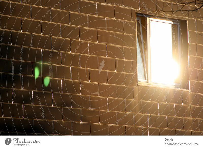 House (Residential Structure) Window Brown Bright Facade Simple Illuminate Brick wall Brick facade
