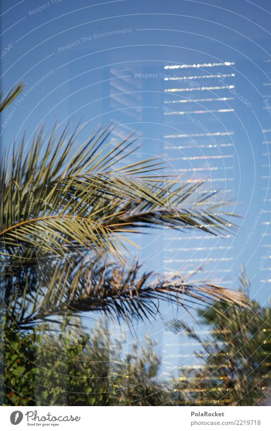 #A# modern Deserted Esthetic Luxury Window Reflection Palm tree Vacation & Travel Vacation photo Vacation mood Vacation destination Villa Summer vacation Design