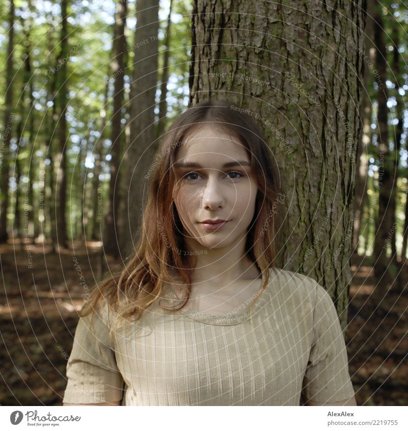 Portrait in the forest Beautiful Life Young woman Youth (Young adults) Face 18 - 30 years Adults Nature Beautiful weather Tree Forest Top Brunette Long-haired