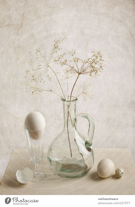 White Nutrition Gray Glass Glass Food Esthetic Decoration Egg Still Life Vase Light Picturesque Object photography Hen's egg