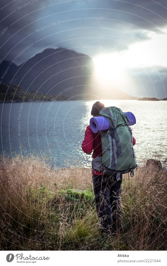 Young man with hiking backpack at the sea in backlight, Lofoten Vacation & Travel Trip Adventure Freedom Hiking Youth (Young adults) Landscape Climate change