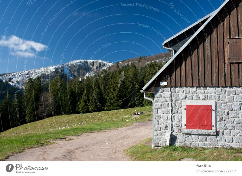 Nature Sky Tree Red Calm House (Residential Structure) Clouds Forest Snow Meadow Wall (building) Window Grass Mountain Wall (barrier) Landscape