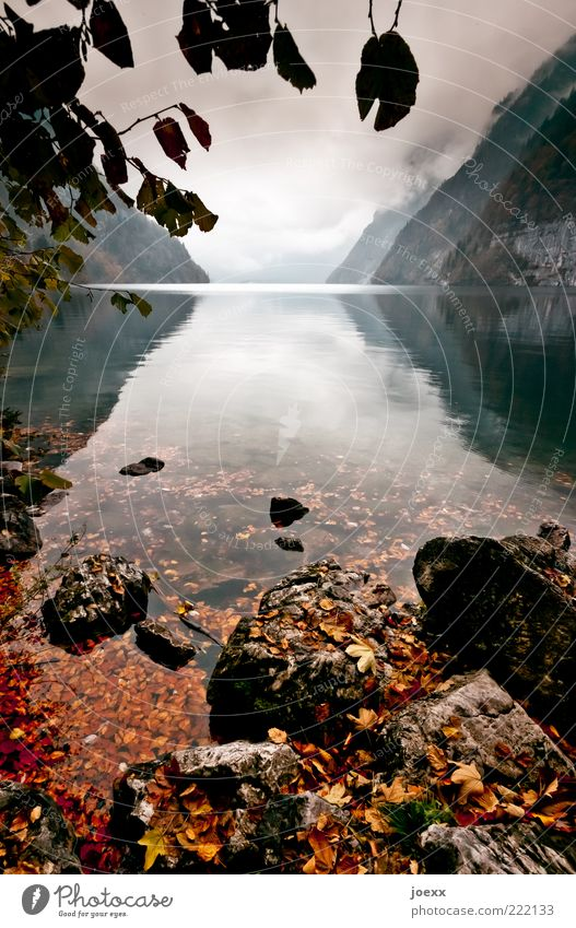 Nature Water Green Calm Leaf Clouds Loneliness Far-off places Autumn Mountain Lake Landscape Power Near Change Uniqueness