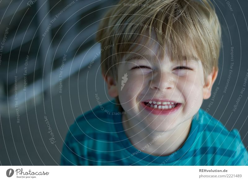 Boy laughs into the camera Human being Masculine Child Toddler Boy (child) Head Face 1 1 - 3 years 3 - 8 years Infancy smile Laughter Authentic Brash Happiness