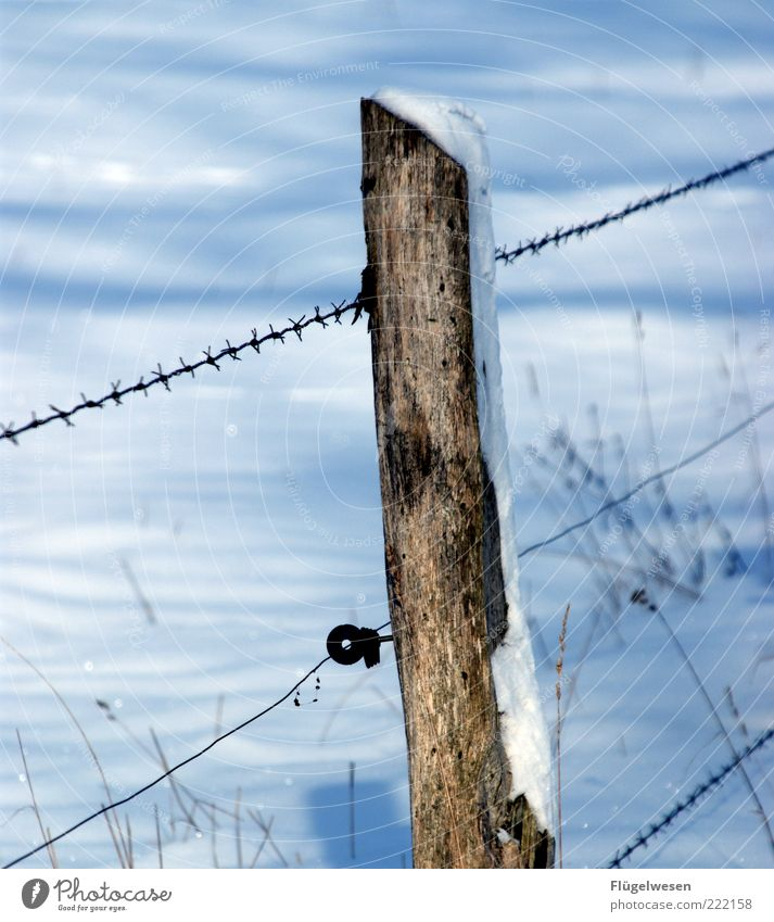Winter Cold Snow Meadow Ice Field Weather Safety Frost Climate Fence Claustrophobia Barbed wire Wooden stake Barbed wire fence Snow layer