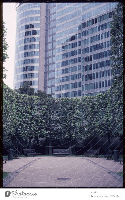 City Tree Park Facade Large Modern High-rise Esthetic Sharp-edged Pane Park bench Office building Glas facade House (Residential Structure) Brussels Resting place