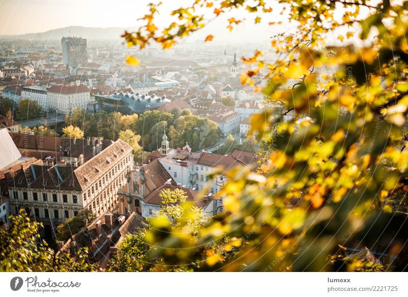 Nature Town Leaf Yellow Environment Autumn Brown Gold Roof Downtown Austria World heritage Graz Mountain castle