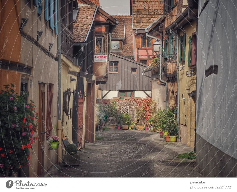 souvenirs d'eguisheim Old town Deserted House (Residential Structure) Architecture Tourism Past Lanes & trails Time Alsace Cozy Vintage Idyll France