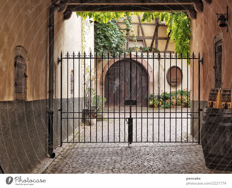 Old Plant Facade Door Authentic Closed Historic Vine Old town Cobblestones Arch Interior courtyard Half-timbered house Alsace Wrought iron Wooden gate